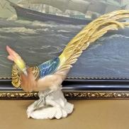 32 - Papuga ENS